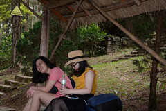 _DSC6436 (Quyr) Tags: dalat vietnam green smoke frog cloud tree forest langbiang lamdong portrait thunglungvang duonghamdatset