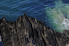 Ship shredder (J. Roseen) Tags: sharp teeth water sea watersedge rocks coast viscious dangerous wales wales2018 pembrokeshire stdavids eos7dmkii ef2470mmf28l