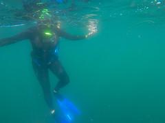 GOPR0282.00_02_53_13.Still018 (Compassionate) Tags: lajolla lajollacove lajollashores snorkel snorkeling ocean sea swimming