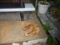 Rain (navejo) Tags: montreal quebec canada shoes sandals rain stairs steps stoop plant h