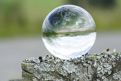 It's a topsy turvey world ;o) (Elisafox22) Tags: elisafox22 sony ilca77m2 100mmf28 macro macrolens telemacro lens hff fencedfriday fence fencepost weathered worn lichen crystal crystalsphere refraction landscape sky outdoors fencefriday huntly aberdeenshire scotland elisaliddell©2018