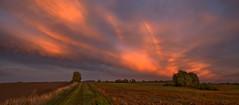 Abendlicht-mit-Regenbogen (herberthowe) Tags: himmel wolken abendstimmung abendhimmel abendlicht sonnenuntergang felder