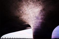 Under the bridge (Maerten Prins) Tags: netherlands nederland holland nijmegen lent bridge waalbrug waalbridge river waal nevengeul evening sunset longexposure concrete trees sky clouds