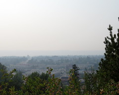 Wildfire smoke over city ~ 2 (diffuse) Tags: princegeorge smoke wildfires city visibility trees connaughthill viewpoint fifteenthave hospital