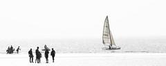FRANCE 2018, Wimereux (68) (Padski1945) Tags: wimereux france france2018 scenesfromoverseas boats boatsboardsandsail blackwhite blackandwhite blackandwhitephotography mono monochrome monochromephotography people thebeach onthebeach sails