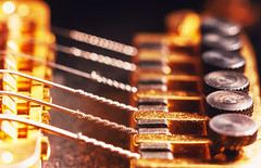 Electric Guitar Fine Tuners (dejankrsmanovic) Tags: tuner fine bridge electric guitar string tune instrument musical hardware structure detail closeup macro stilllife object partof design style concept conceptual dusty dirty gold metal metallic steel abstract control screw