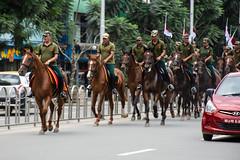 Horses on Kathmandu street