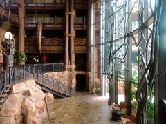 Main Hall (moacirdsp) Tags: main hall disneys animal kingdom villas jambo house resorts walt disney world florida usa 2018