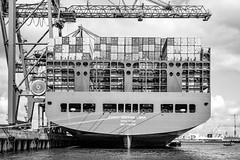 Fototour Hafen Hamburg (klaus.bostelmann) Tags: hamburg hafen barkasse elbphilharmonie köhlbrandbrücke fototörn dritterfototörn fotohaven