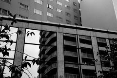 Two world (shou yokoya) Tags: streetphotography streetphotofraphy film 135 35㎜ nokton voigtlănder bessat 40㎜