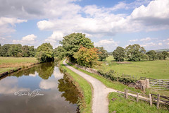 SJ1_0381 - Lancashire fades into Yorkshire.... (SWJuk) Tags: swjuk uk unitedkingdom gb britain england lancashire foulridge canal leedsliverpoolcanal yorkshire water waterscape flat calm reflections bluesky clouds towpath footpath trees landscape fields farmland 2018 sep2018 summer autumn nikon d7200 nikond7200 rawnef lightroomclassiccc tokina1116mm wideangle