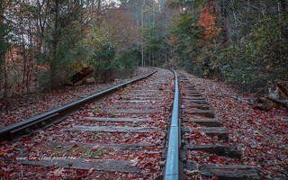 Fall Mountain Tracks