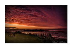 Under a Blood Red Sky (Deek Wilson) Tags: sunrise strangfordlough newtownards comber ardspeninsula redsky northernireland landscape