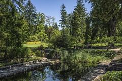 A decorative garden in Żelazowa Wola - a manor in which Chopin grew up (Adam Nowak) Tags: trawa zieleń woda