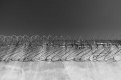 Mémorial National de la Prison Montluc (Laetitia.p_lyon) Tags: fujifilmxt2 prison jail montluc penitentiary mémorialnational noiretblanc nb blackandwhite bnw bw monochrome monochromatic barbelé barbedwire barbwire