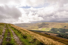 SJ1_1026 - The Pennine Way above Snaizeholme (SWJuk) Tags: swjuk uk unitedkingdom gb britain england yorkshire northyorkshire yorkshiredales dales wensleydale snaizeholme pennineway path trail track hills hillside moors moorland trees grasses skies sky clouds 2018 sep2018 autumn holiday nikon d7200 nikond7200 rawnef lightroomclassiccc 18300mm landscape countryside scenery