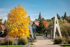 Passerelle du Graoully (Metz, France)-108 (MMARCZYK) Tags: metz grandest france moselle 57 parc de la seille pont ost bridge passerelle kosmi terrell ouvrage dart ingenierie paysage