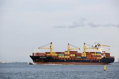 NEWYORKER (angelo vlassenrood) Tags: ship vessel nederland netherlands photo shoot shot photoshot picture westerschelde boot schip canon angelo walsoorden cargo container newyorker