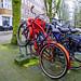 Biciclino Rampante (260/365)