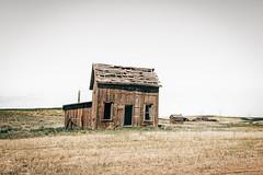Ghosts Of The Past (Pedalhead'71) Tags: abandoned desert douglascounty easternwashington farmhouse homestead house landscape prairie rural washington wheat