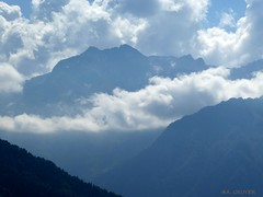 In the clouds (FleurdeLotus28) Tags: montagne mountain landscape nuage cloud sky ciel brume fog cime pyrénées hautespyrénées france paysage lumix nature forêt wood tree