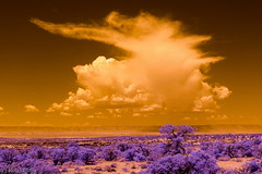 Cloud 590 (robpolder) Tags: 2018 fullspectrum infrared usa arizona