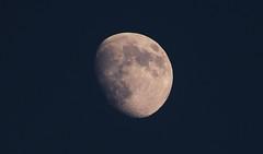 La Màgia de la Lluna gibosa.