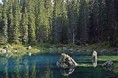 _DSC4787bw1 (dede0561) Tags: canazei montagna alberi pini paesaggio bosco roccia legno dolomiti luci e ombre valdifassa lago carezzaallago