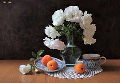 Creating    Moment (Esther Spektor - Thanks for 12+millions views..) Tags: stilllife naturemorte naturezamorta stilleben naturamorta bodegon composition creativephotography artisticphoto summer tabletop bouquet rose fruit apricot vase cup plate doily glasss ceramics lace pattern ambientlight white green blue orange brown estherspektor canon