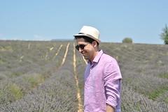 Provence - Valensole (demiante) Tags: provence valensole lavande lavender lavanda france frança