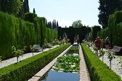 Giardini Generalife (Francesca Sa) Tags: giardini generalife alhambra spagna spain garden water granada green verde giardino fontana fontaine andalucia andalusia alḥamrā