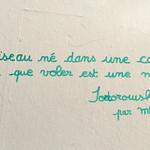 Words on wall [Lyon, France] thumbnail