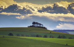 The Heavens (James Etchells) Tags: marlborough downs wiltshire sony a700 landscape landscapes sky clouds reedit nature natural world fields tree trees photography colour color past memories dramatic outdoor outdoors south west england uk britain lines leading