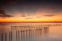 Lagoons At Burning Dusk (風傳影像) Tags: tainancity taiwan danieldawn sunrisedawn