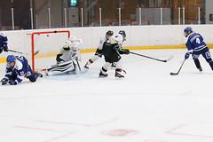 C78K1819-2 (Armborg) Tags: leksands if sdhl sde hockey wilma johansson lag