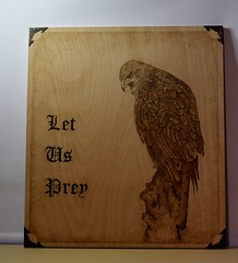Pyorgrathy ( wood burning ) (davy ren2) Tags: burning wood plywood goshawk