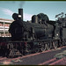 2.1966 Gladstone - South Australia loco SAR Rx210 alongside sheep wagon SF107 (mb-s003-20)