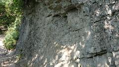 DSCF8451 (rmassart) Tags: m08 y2018 croatia plitvicka jezera plitvickajezera plitvichka lakes