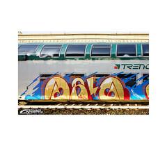 ASSA GOLD by ONIL (StrangeSpotter) Tags: assa graffiti train traingraffiti streetart street italy art painted paintedtrains graffitiart graffititrain graff