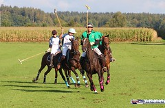 am_polo_cup18_0375 (bayernwelle) Tags: amateur polo cup gut ising september 2018 chiemgau bayern oberbayern pferd pferdesport reiter bayernwelle foto fotos oudoor game horse bavaria international reitsport event sommer herbst