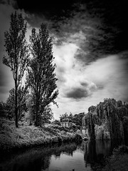 rnor80737.jpg (Robert Norbury) Tags: fuckit somearelandscapessomearenot icantbearsedkeywording fineartphotography blackandwhite photographer itdoesntmatterwhattheyarepicturesoftheyarejustpictures itdoesntmatterwhattheyarepicturesoftheyarejustpictur