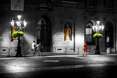 Plaça de Sant Jaume - A la nit (Fnikos) Tags: street plaça plaza road wall building architecture column statue sculpure light plant nature farol door window people walk blackandwhite nightview nightshot outdoor