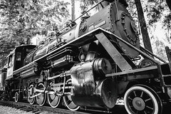 Skunk Train (Thomas Hawk) Tags: america california campmendocino mendocinocounty skunktrain usa unitedstates unitedstatesofamerica bw locomotive train fav10 fav25 fav50 fav100