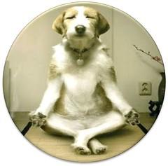 Anglų lietuvių žodynas. Žodis meditates reiškia medituoja lietuviškai.