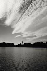 Berlin, Malchower See (tom-schulz) Tags: x100f monochrom bw sw outofcamera ooc berlin thomasschulz see teich wasser himmel horizont silhouette wolken
