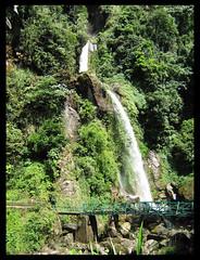 Sikkim, Himalayas, India (bohemian_hearttanu) Tags: sikkim himalayas himalayan heaven buddhist himalayanbuddhism greenery mountains mountainpeople eastsikkim gangtok travelling travel travelphotography photography kids sky landscape landscapephotography lifestyle lifestylephotography