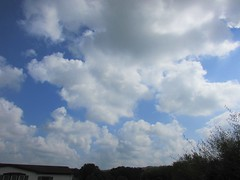 Saturday (creed_400) Tags: september summer belmont west michigan blue sky clouds