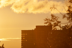 Golden Morning (John Beales) Tags: morning sunrise goldenhour goldenlight sunlight light apartment building clouds architecture windows window