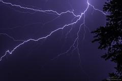 Lightning 8-17-2018 (FinkoPhotos) Tags: lightning weather clouds storms trees silhouette sky evening rain rainy