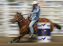 If you want a stable relationship, get a horse! (cowgirlrightup) Tags: sexycowgirl barrelracer horse cowgirlrightup rodeo alberta canada canon7d
